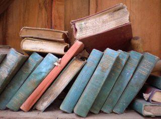 books-785894_960_720